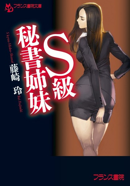 S級秘書姉妹 (小説)