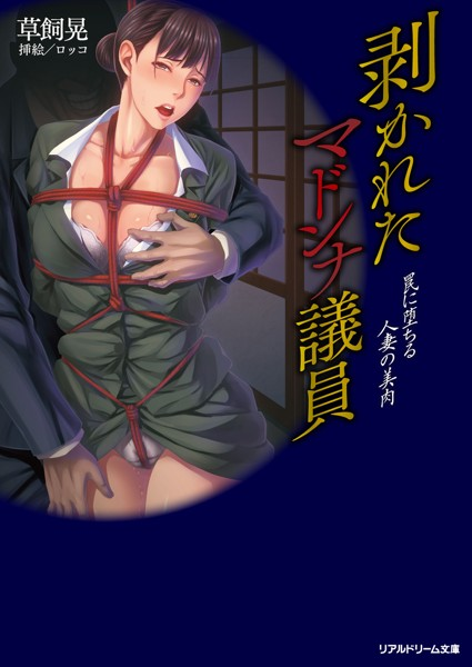 剥かれたマドンナ議員 罠に堕ちる人妻の美肉 (小説)