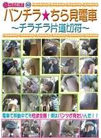 「パンチラ☆ちら見電車 〜チラチラ片道切符〜」のパッケージ画像