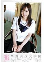 鮎川なお/高貴美少女学園 4 [DVD]