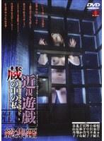 「近親遊戯 蔵の中の私 総集編」のパッケージ画像
