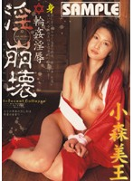 「淫・崩壊 輪姦淫辱 小森美王」のパッケージ画像