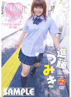 「バーチャルファック 女子校生編 進藤つみき」のパッケージ画像