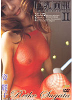 「巨乳画報 2 姿麗子」のパッケージ画像
