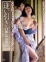 「逢い引き 白樺温泉逃避行 大森涼子」のパッケージ画像