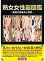 熟女女性器図鑑-陰核の仕組みと反応-
