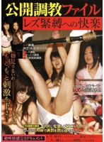 「公開調教ファイル レズ緊縛への快楽 林まりあ 松村かすみ」のパッケージ画像
