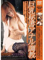 「巨乳秘書アナル調教 沙里奈ユイ」のパッケージ画像