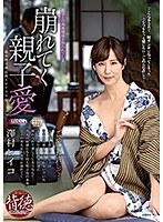 「崩れてく親子愛 澤村レイコ」のパッケージ画像