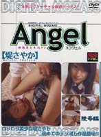 「Angel 堤さやか 陵辱編」のパッケージ画像