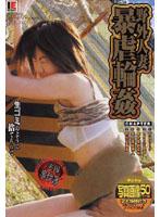 「野外人妻暴虐輪姦 椎名みなみ」のパッケージ画像