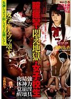 「膣痙攣・悶え地獄・女子校生 大沢佑香」のパッケージ画像