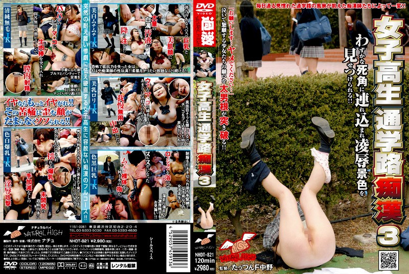 [NHDT 821] Molesters In Front Of Girls School (981MB MKV x264)