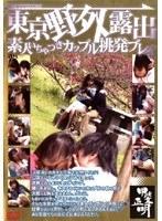 「東京野外露出 素人いちゃつきカップル挑発プレイ」のパッケージ画像