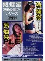 「熟爛漫 淫欲の果てシリーズ第6巻」のパッケージ画像
