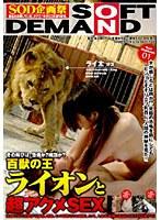 「百獣の王ライオンと超アクメSEX」のパッケージ画像