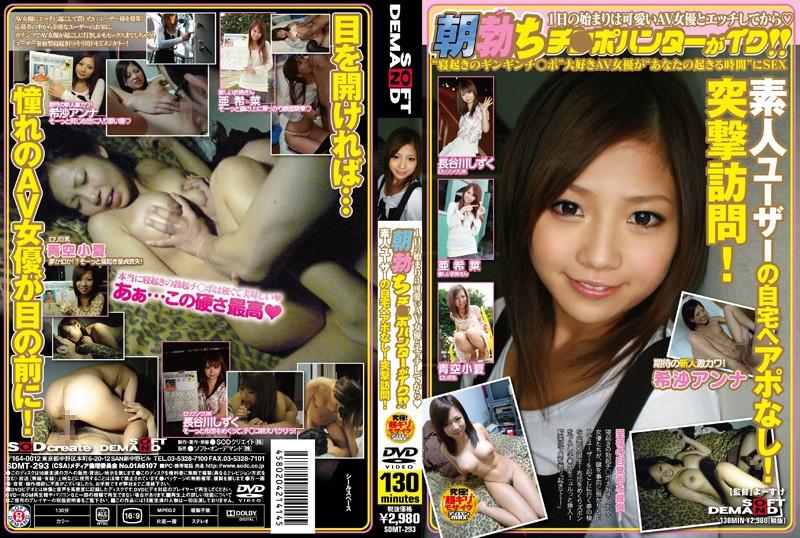 1sdmt293pl SDMT 293 Akina, Chinatsu Aozora, Shizuku Hasegawa, Anna Kisa   AV Girls Visit Random Home
