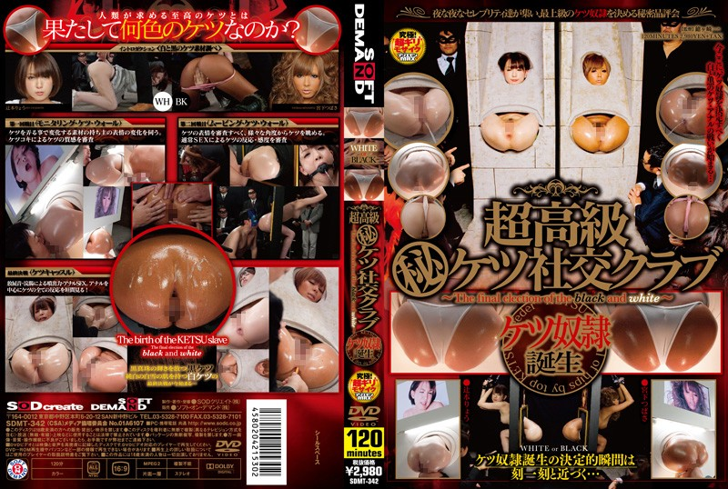 1sdmt342pl SDMT 342 Ryo Tsujimoto, Tsubasa Miyashita   Super High Class Ass Sex Club