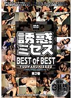 「誘惑ミセス BEST of BEST 第2巻」のパッケージ画像