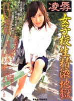 「凌辱 女子校生精液地獄 江口美貴」のパッケージ画像