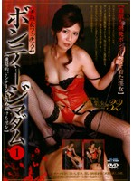 「ボンテージマダム 1」のパッケージ画像