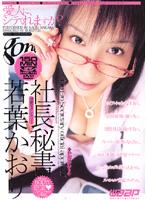 「社長秘書 若葉かおり」のパッケージ画像