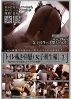 「トイレ覗き・自慰 (女子校生編)3」のパッケージ画像