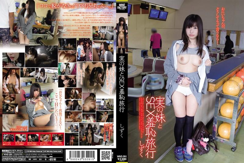 3wnz291pl WNZ 291 Shizuku   Real Travel Sex Sister