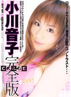 「小川音子 完全版」のパッケージ画像