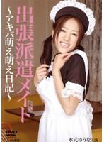 「出張派遣メイド ~アキバ萌え萌え日記~」のパッケージ画像