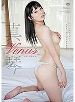 Venus/真琴