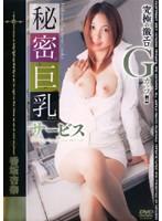「秘密の巨乳ちゃんサービス 香坂杏奈」のパッケージ画像