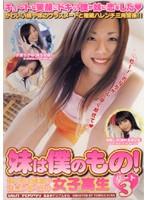 「妹は僕のもの! 僕の妹は制服が似合いまくりの女子校生 パート3」のパッケージ画像