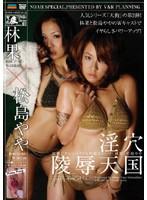 「淫穴陵辱天国 林果×松嶋やや」のパッケージ画像