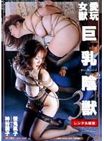「巨乳陰獣3」のパッケージ画像
