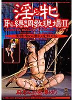 「淫ら牝 恥縛調教現場 2」のパッケージ画像