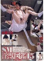 「SM淫獣図鑑 15 小泉リカ」のパッケージ画像