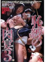 「恥縛の肉宴 3 星野なつみ」のパッケージ画像