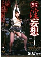「淫妄想 1 飯島くらら」のパッケージ画像