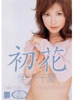 初花 -hatsuhana- 伊沢千夏