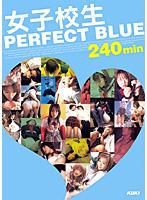 「女子校生 PERFECT BLUE 240min」のパッケージ画像