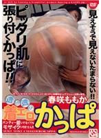 「透け透け 着エロかっぱ 春咲ももか」のパッケージ画像