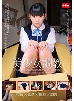 「美少女調教 ダンボール箱に監禁された女子校生つな」のパッケージ画像