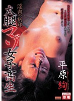 「淫肉の刻印 太腿マゾ女子校生 平原絢」のパッケージ画像