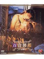 「百合図鑑 for DVD」のパッケージ画像
