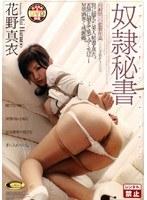 奴隷秘書 花野真衣 [DVD]