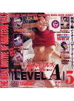 「素人ギャルズ[LEVEL A] VER.5」のパッケージ画像