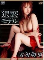 吉沢明歩 猥褻モデル