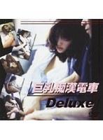 「巨乳痴漢電車 Deluxe」のパッケージ画像