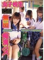 「女子校生集団痴漢バス」のパッケージ画像